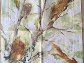 """Serviette en papier """"Les écureuils et leurs a"""