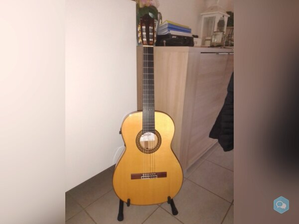 guitare Camps FL11S - img