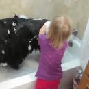 La technique d'une petite fille pour laver un chien géant