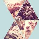 La Journée Mondiale des Animaux