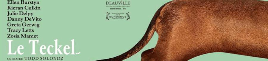 Sortie Cinéma : Le Teckel, un film qui met à l'honneur le chien