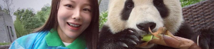 Quand un panda géant excelle dans l'art des selfies