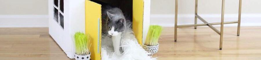 5 cabanes en carton à fabriquer que vos chats vont apprécier