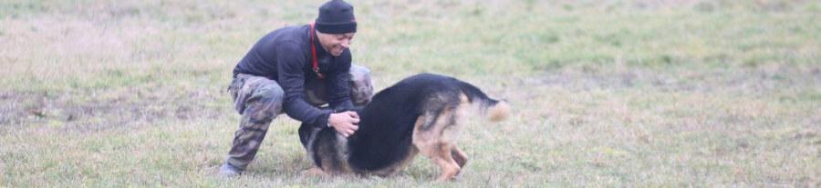 Offrez-vous un coach, offrez-lui de l'attitude : entretien avec Karl Toure, coach et consultant en bien-être canin