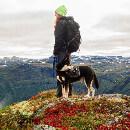 Conseils pour partir avec son chien en randonnée