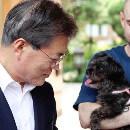 Un chien destiné à l'abattoir est adopté par le président de la Corée du Sud