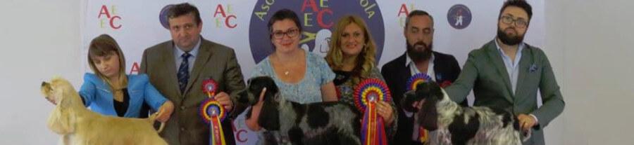 Entretien avec Isabelle Lechevalier, toiletteur canin, médaille d'or Calella de Palafrugell (Espagne)