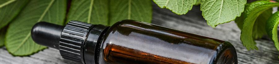L'utilité pour les animaux des huiles essentielles : entretien avec Dr. Joëlle ROBYNS