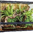 Tout savoir sur l'éclairage du terrarium