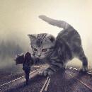 Les animaux gigantesques : bienvenue dans le monde surréaliste du photographe Mani