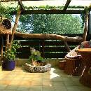 Catio, ou patio pour chat : nouvelle tendance pour assurer le bien-être de votre félin