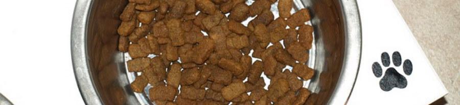 Croquettes sur mesure pour chien