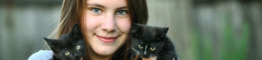Socialisation du chaton