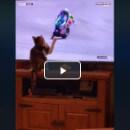 Vidéo : ce chat fait chuter un motard à la télévision