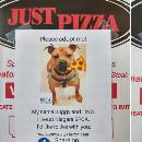 Une pizzeria vient en aide à un refuge en mettant les photos des chiens sur ses boîtes à pizza