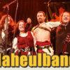 Concert des 15 ans du Naheulband 2.jpg