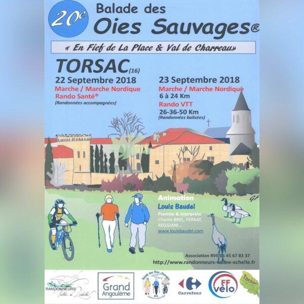 Balades des Oies Sauvages (16)