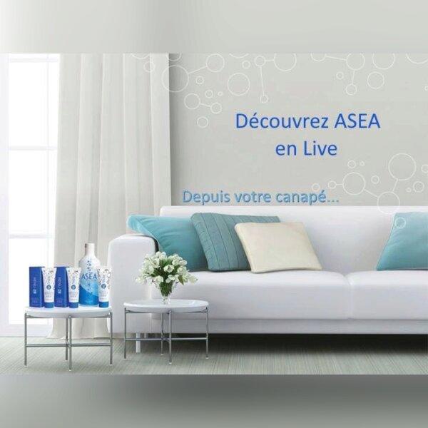 CONFÉRENCE ASEA AVEC AMABEL 1.jpg