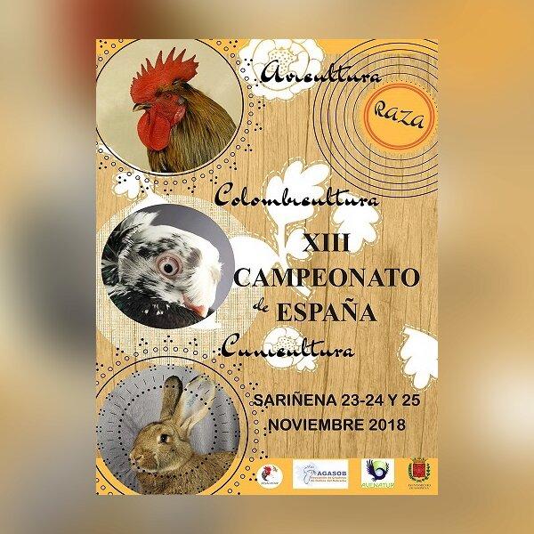 XIII Campeonato de España de Avicultura, Colombicu