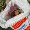 Ramassage de déchets plage Valentin - Batz-sur-Mer