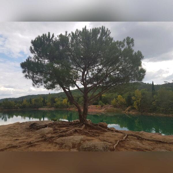 Sortie bivouac vers lacs de Carcès