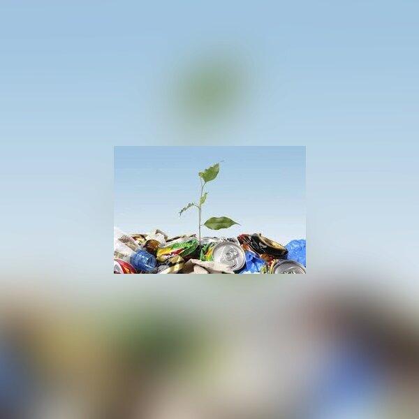 [Ecologie] Nettoyage de la gare de Sain Bel 1.jpg