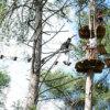 Arborismo/ Natureza
