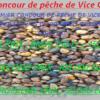 Concours de pêche de Vice City