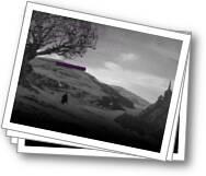 http://worldofharrypotter.forumeiros.com
