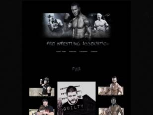 Pro Wrestling Association