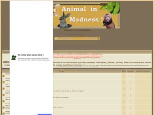 Animal in madness - Animaux en folie