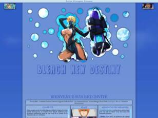 Bleach New Destiny