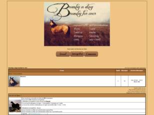 créer un forum : Brumby a day, brumby for ever
