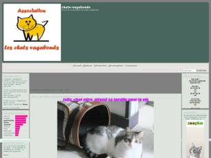 Association les chats vagabonds
