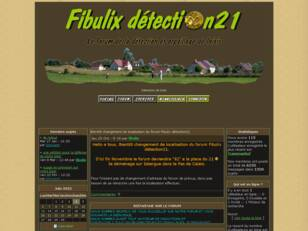 Détection de loisir : FIBULIX DETECTION 21