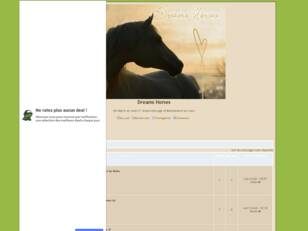 Forum gratis : Dreams Horses