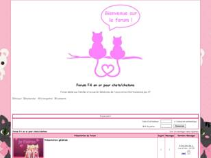 Forum FA en or pour chats/chatons