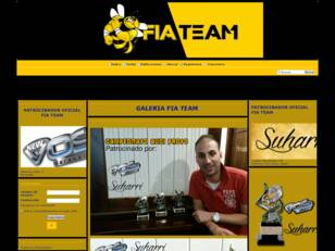 FIA TEAM RACING
