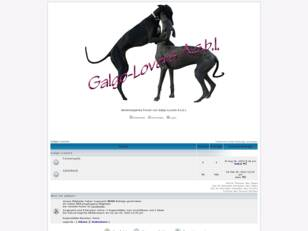 Galgo-Lovers