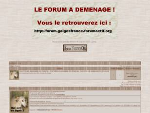 Forum Galgos France
