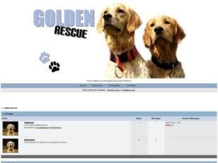 Golden-Rescue : Le forum desriné aux sauvetages des Golden Retriever.