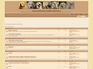 Golden Retrievers Forum