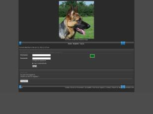 Free forum : gsd lovers