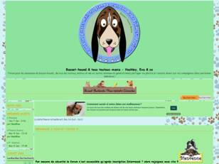 Forum Hashley basset-hound & co