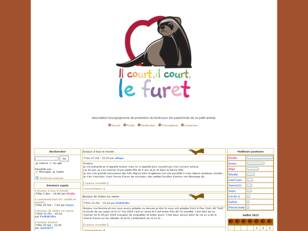 Association Il court, il court, le furet