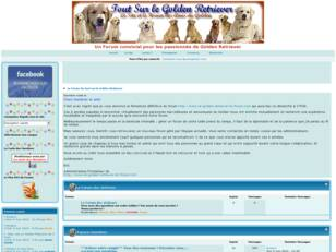 Le Forum  de tout sur le Golden Retriever.fr
