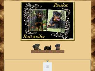 Passion rottweiler