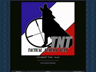T.N.T. Tactical Nemesis Team