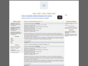 Forum gratis : Mania de Download™
