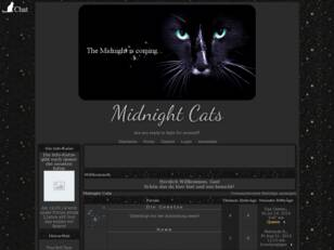 Midnight Cats